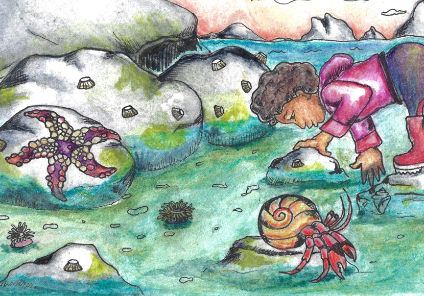 Painting of kid and animals at the tide pool